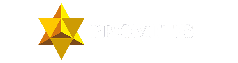 Logo_PROMITIS_prostokat_bez_tła